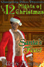 Santa's Feast (ebook)