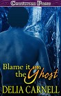 Blame it on the Ghost (ebook)