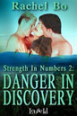Danger in Discovery (ebook)