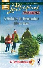 Holiday to Remember, A (Large Print)