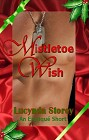 Mistletoe Wish (ebook)