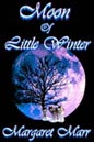 Moon of Little Winter