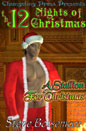 Stallion For Christmas, A (ebook)