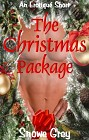 Christmas Package, The (ebook)