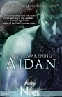 Aidan (ebook)