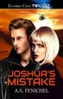 Joshua's Mistake (ebook)