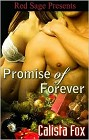 Promise of Forever (ebook)