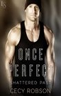 Once Perfect (ebook)