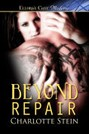 Beyond Repair (ebook)