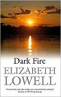 Dark Fire (hardcover)
