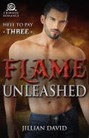 Flame Unleashed (ebook)