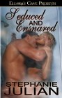 Seduced & Ensnared  eBook