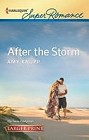 After the Storm  (large print)
