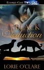 Black Seduction (ebook)