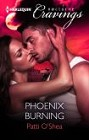 Phoenix Burning (ebook)