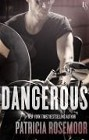 Dangerous (ebook)