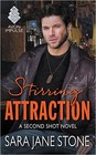 Stirring Attraction (ebook)
