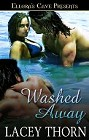 Washed Away  (ebook)